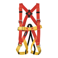 CAMP Bambino Children's Full Body Harness