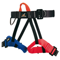 CAMP Group II Harness