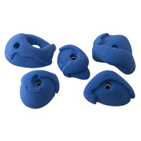 Metolius PU Blue Ribbon Modular Holds 5 Pack - Set B