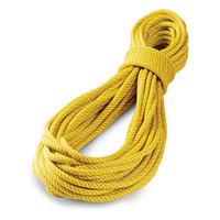 Tendon Ambition 9.8 50m Standard Yellow Green