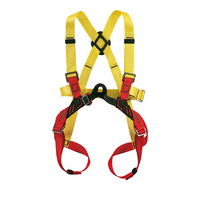 CAMP Baby Adventure Full Body Harness